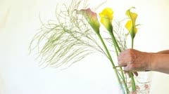 Flower arranging Stock Footage