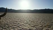 Pan of Skull on the Desert Floor - Death Valley Stock Footage