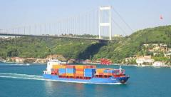 Container ship sails under the bridge Stock Footage