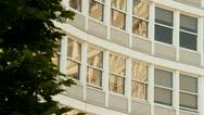 Office windows tree Stock Footage