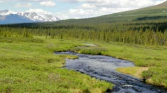 Alaskan creek flowing along the Denali Highway on a summer day Stock Footage