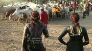Stock Video Footage of African ritual