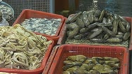 Fresh seafoods for sale, street market, Hong Kong, China Stock Footage