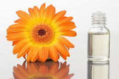 A glass phial and an orange gerbera - stock photo