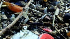 Trash On Ocean Beach With Plastic And Styrofoam Close Up - stock footage