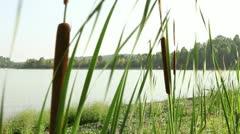 Jetski in Siberian river 2 Stock Footage