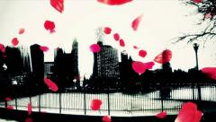 Rose petals over the city Stock Footage