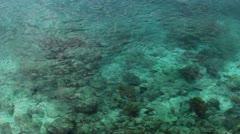 Celear sea Stock Footage