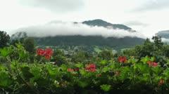 European Alps Austria 09 Stock Footage