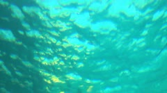 Sea level Stock Footage