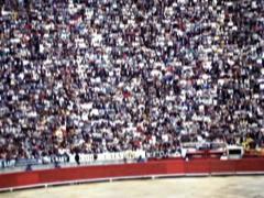 Vintage Spanish Bullfight Pan on Crowded Arena 08 - Old 16mm Film Stock Footage