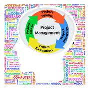 Head with prince2 model for project management Stock Illustration