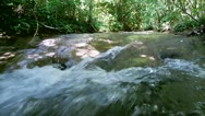 Stock Video Footage of river flowing through a forest
