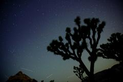 Stars in sky over desert Stock Photos
