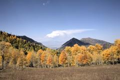 Autumn colors from high mountain meadow to valley Stock Photos