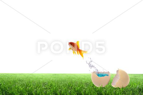 Stock Illustration of golden fish jump out side the egg