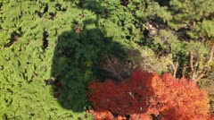 Cable Car shadow in Autumn Stock Footage