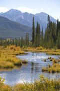 Vermilion lakes in autumn Stock Photos