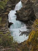 Athabasca river in jasper national park Stock Photos