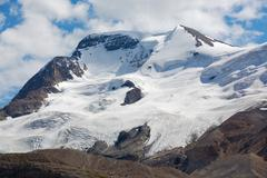 mount athabasca in jasper national park - stock photo