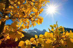 autumn leaves with mountain - stock photo