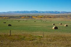 Hayfield and rocky mountains Stock Photos