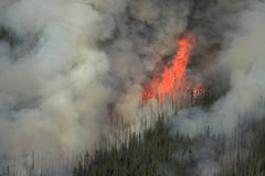 Stock Photo of forest fire in the rocky mountains 07