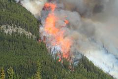 Forest fire in the rocky mountains 09 Stock Photos