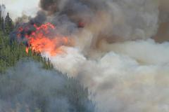 Forest fire in the rocky mountains 10 Stock Photos