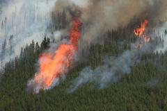forest fire in the rocky mountains 12 - stock photo