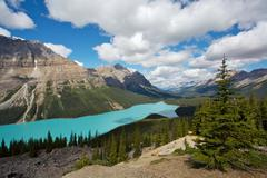 Peyto Lake in Banff National Park - stock photo