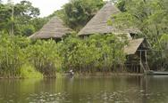 Stock Photo of Lodge in the Ecuadorian Amazon.jpg