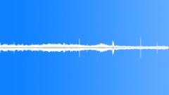 Woodland Birds 1 Sound Effect