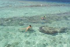Snorklaus Malediivien saarilla Kuvituskuvat