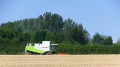A combine harvester harvesting wheat Stock Footage