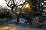 Japanese Garden at Sunset in Winter Stock Photos