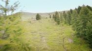 Flying over Alpine Landscape Stock Footage