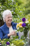 Senior woman smiling and arranging flowers in vase Stock Photos