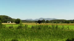 Beautiful Summer Countryside 01 Stock Footage