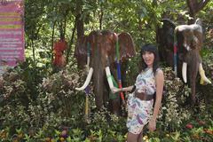 Asian woman holding tusk of elephant tusk Stock Photos
