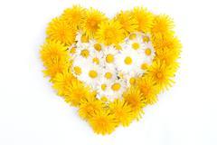 heart symbol - stock photo