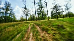 Mad flight through the forest Stock Footage