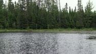 Stock Video Footage of Lake shoreline pan2