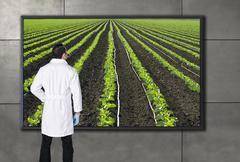 Latinalaisamerikkalainen tiedemies katsot maatalouden kuvaa televisioruudussa Kuvituskuvat