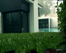 House grass Stock Footage
