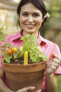 Hispanic woman holding potted tomato plant Stock Photos