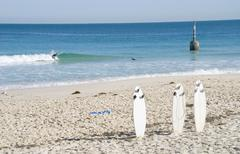 surfboards at cottesloe beach - stock photo