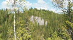 A rock in the middle of the forest Stock Footage