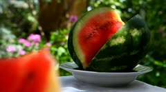 Watermelon sunny summer day Stock Footage