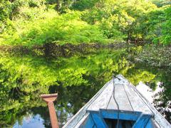 Amazonian boat Stock Photos